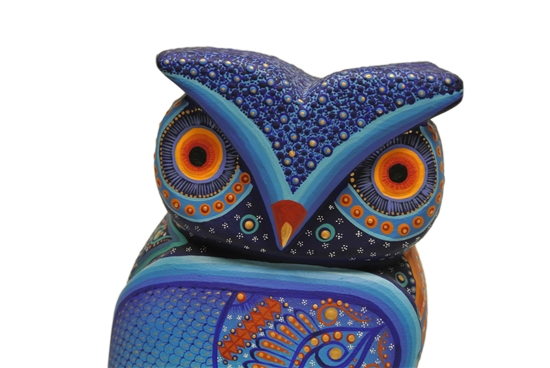 Blue Owl is the Only One in the World.